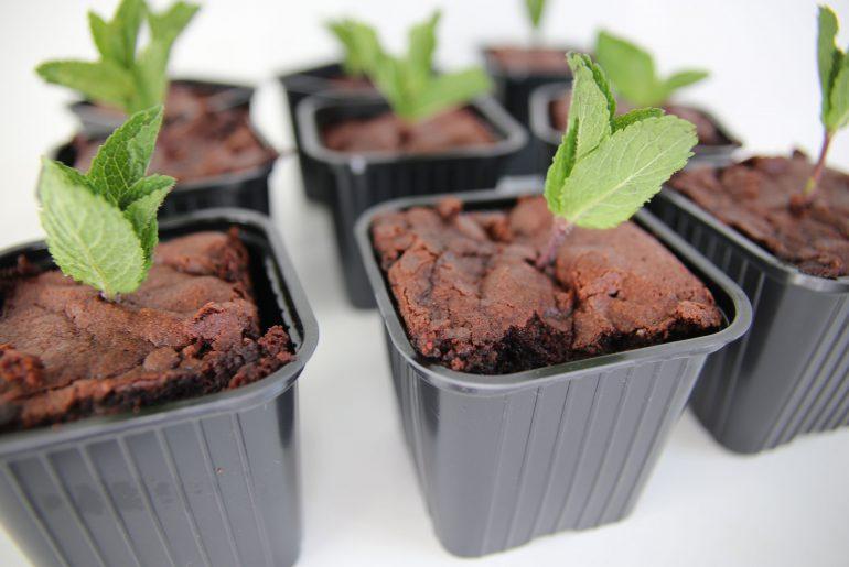 Gezonde traktatie: brownie moestuin - Beter door Eten