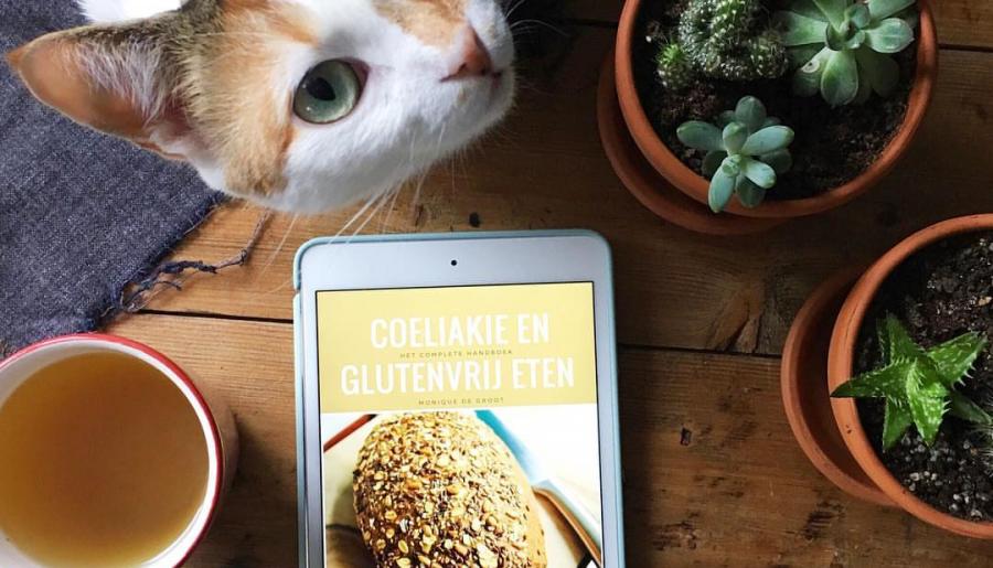 Nu te koop: handboek Coeliakie en glutenvrij eten!
